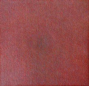 PRAPAUČINA U CRVENOM PROSTORU90,0 x 90,0 2006 al ulje žica