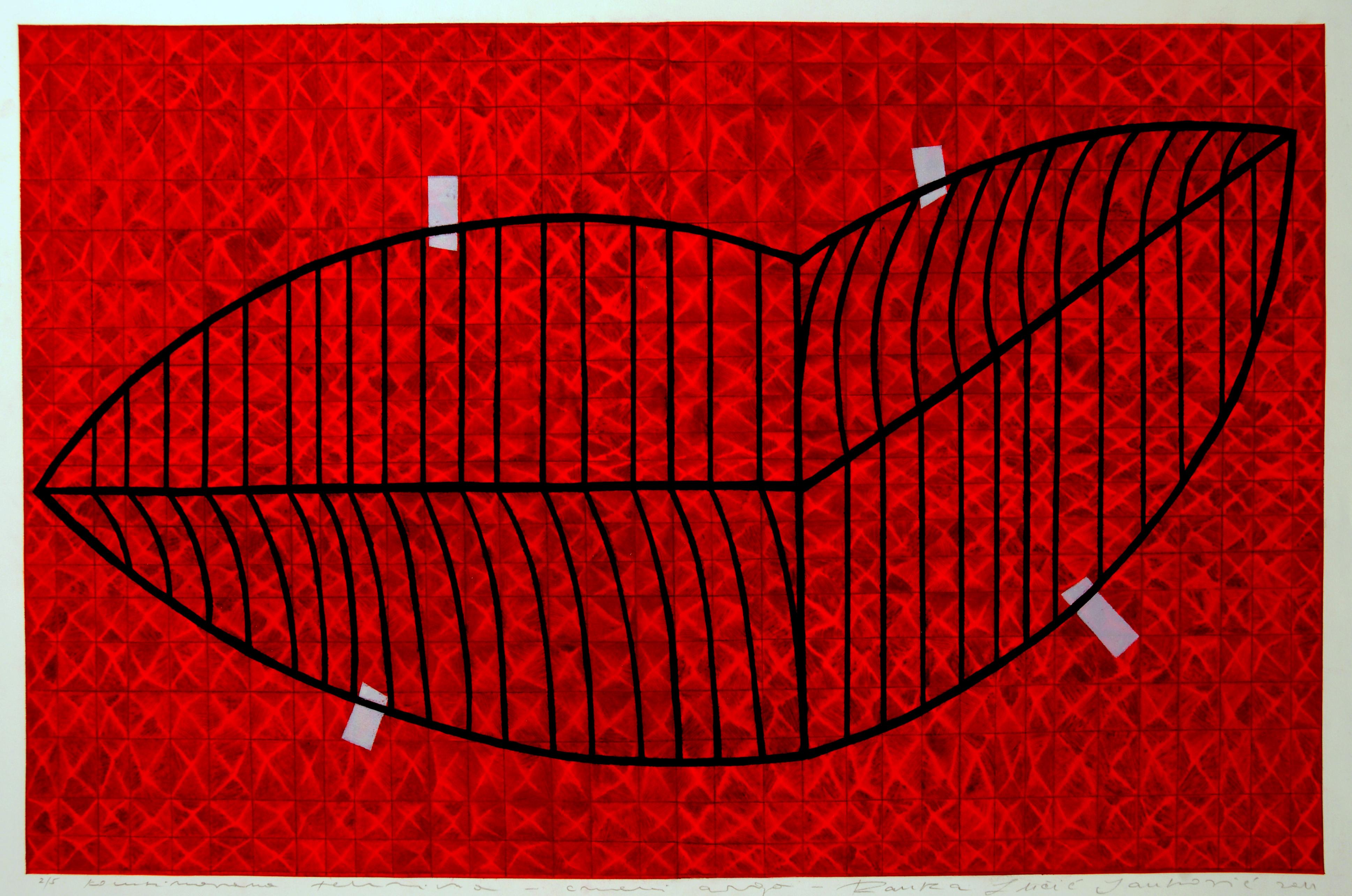 Crveni argo